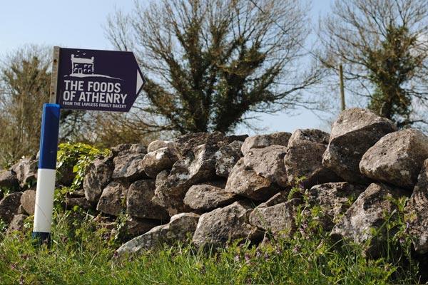 Athenry Women, Athenry Single Women, Athenry - Mingle2