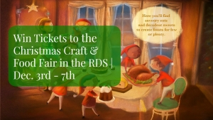 Christmas Craft & Food Fair Dec 2014 RDS DUBLIN